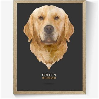 Geometrisk Golden-retriever-plakat