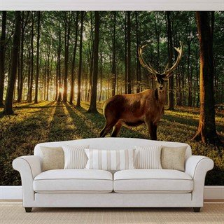 Fototapet-deer-forest-trees-nature--veggmaleri-3194wm-animals-fauna