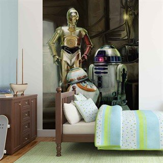 Fototapet-star-wars-droids--veggmaleri-2762wm-star-wars