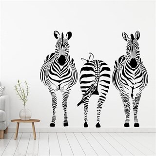 3 sebra på stripe som wallstickers